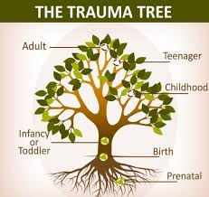 The Trauma Tree